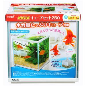 ジェックス 金魚元気キューブセット250 【水槽用品】 【ペット用品】