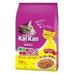 (まとめ)KDN21カルカンドライかつおと野菜1.6k 【猫用・フード】【ペット用品】【×6セット】