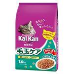 (まとめ)KDN23 カルカンドライ毛玉ケア1.6kg 【猫用・フード】【ペット用品】【×6セット】