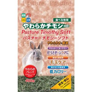 (まとめ)新パスチャーチモシーソフト400g【ペット用品】【×12セット】