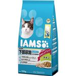 (まとめ) マースジャパンリミテッド アイムス 成猫下部尿路チキン550g 【ペット用品】 【×6セット】