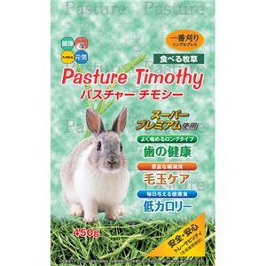 (まとめ)ハイペット新パスチャーチモシー450g(猫用・フード)【ペット用品】【×12セット】