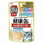 (まとめ)健康缶パウチ 20歳からのとろとろまぐろペースト 40g【×48セット】【ペット用品・猫用フード】