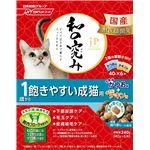 (まとめ)ジェーピースタイル 和の究み 1歳から 飽きやすい成猫用 240g【×12セット】【ペット用品・猫用フード】
