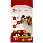 (まとめ)ウェルケア キャバリア専用 オールステージ 3kg【×4セット】【ペット用品・犬用フード】