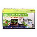 マリーナ600 水槽&フィルターセット【ペット用品】