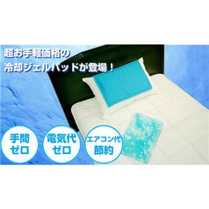 日本製 洗えるクールジェル枕パッド ~お得な洗えるクールマックス枕パッド付き~