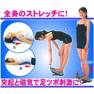 健康習慣ストレッチャー スケール付 【ストレッチボード】