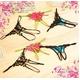 コスプレ 2011新作 セクシーランジェリー☆豪華刺繍 割れTバック3枚セット z555 写真4