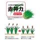 コールドプレス製法 大麦若葉+6種の野菜「生搾り青汁」【5箱】 - 縮小画像2