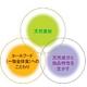 新谷酵素 エンザイムプレミアム 【6本】 - 縮小画像2