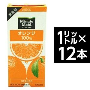 コカ・コーラ (コカコーラ)ミニッツメイドオレンジ100% 1L紙パック×12(6×2)本入