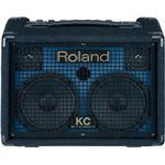Roland(ローランド) ステレオ・キーボード・アンプ Stereo Keyboard Amplifier KC-110