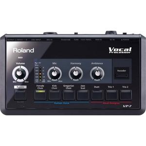 Roland(ローランド) ボーカルプロセッサー VP-7 Vocal Processor - 拡大画像