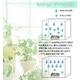 エコ加湿器 ミスティガーデン角形セット - 縮小画像6