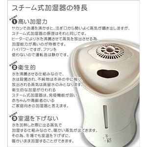 スチーム加湿器 WSM2300 ホワイト