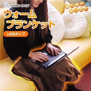 LIVINGSTYLE(リビング スタイル) ウォームブランケット ブラウン USB&シガーソケットタイプ UB-139(D) - 拡大画像