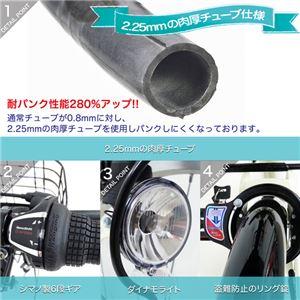 MYPALLAS(マイパラス) 折畳もできる6段変速付シティサイクル M-507-GR グリーン