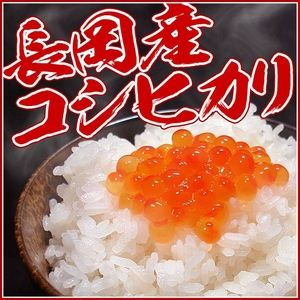 【お試しにも!】新潟県長岡産コシヒカリ5kg  - 拡大画像