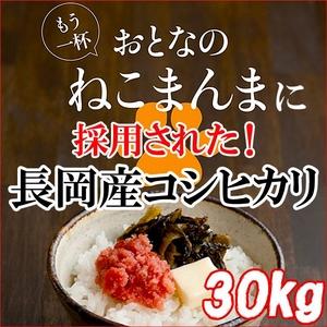 平成23年産 中村さんちの新潟県長岡産コシヒカリ白米 30kg(5kg×6袋) - 拡大画像