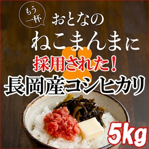 平成23年産 中村さんちの新潟県長岡産コシヒカリ玄米 5kg - 拡大画像