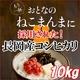 平成23年産 中村さんちの新潟県長岡産コシヒカリ玄米 10kg(5kg×2袋) - 縮小画像1
