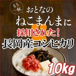 平成23年産 中村さんちの新潟県長岡産コシヒカリ玄米 10kg(5kg×2袋)