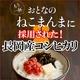 平成23年産 中村さんちの新潟県長岡産コシヒカリ玄米 20kg(5kg×4袋) - 縮小画像2