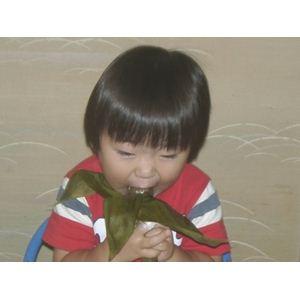 お試しに!新潟名物伝統の味!笹団子 つぶあん10個の紹介画像6
