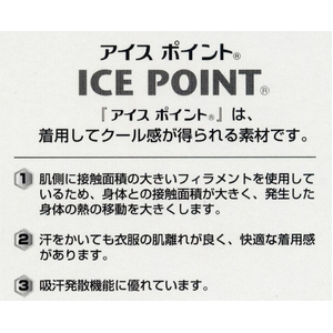 頭部の熱を効果的に逃がすアイスポイント使用ピローケース(2枚組) ブルー 日本製