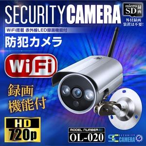 WiFi・赤外線搭載 100万画素 防犯カメラ オンロード(OL-020)