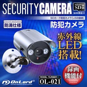 SDカード録画 赤外線暗視 防犯カメラ オンロード(OL-021)
