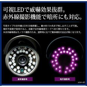 【DELVER(デルバー)】【microSDカード16GBセット】 デジタルレコーダー不要 赤外線搭載/防滴仕様 モーションサーチ防犯カメラ【MD606-16GB】