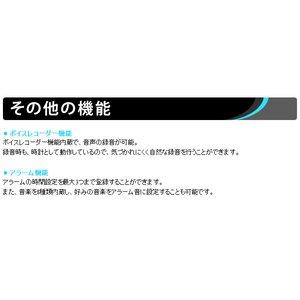 【microSDカード8GBセット】 デジタル置時計型ビデオカメラ ブラック (F8DVR-BK-8GB)