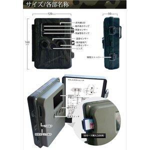 【防犯カメラ】 【microSDカード32GBセット】【アーミータイプ】人感センサー搭載 待機稼働3ヶ月 小型カメラ/防犯カメラ 不可視赤外線 トレイルカメラ(ビデオカメラ) 【TRAIL GUARD typeN - トレイルガード ノーマルタイプ -】(MS-200HTM)
