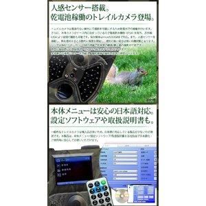 【防犯カメラ】 【microSDカード16GBセット】【ブラックタイプ】人感センサー搭載 待機稼働3ヶ月 小型カメラ/防犯カメラ/リモコン操作 不可視赤外線 トレイルカメラ(ビデオカメラ) 【TRAIL GUARD typeR - トレイルガード リモコンタイプ -】(MS-300HCM)