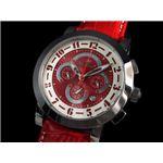 GALLUCCI(ガルーチ) 腕時計 クロノグラフ WT23385CH-SSRD
