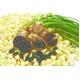 とっても甘くて食べやすい♪ 本場韓国【南海島】の熟成黒にんにく (中玉 150g入り) - 縮小画像2