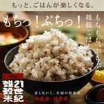 21世紀雑穀米 500g