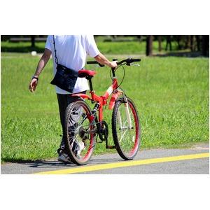 折畳み自転車 FIELD CHAMP WサスF...の紹介画像6