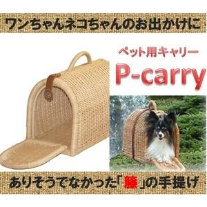 【ペットキャリー】手さげケネル P-carry (ホワイト)★片扉(ベルトなし) - 拡大画像