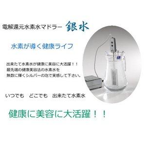 電解還元水素水マドラー 銀水
