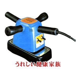 RAYMAX(レイマックス) バイター VR-76B - 拡大画像