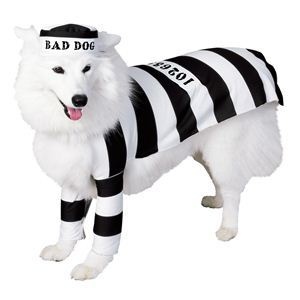 RUBIE'S(ルービーズ) PET(ペット用コスプレ) ペットコスプレ Prison Dog(プリズン ドッグ) Lサイズ - 拡大画像