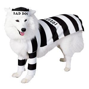 RUBIE'S(ルービーズ) PET(ペット用コスプレ) ペットコスプレ Prison Dog(プリズン ドッグ) Mサイズ - 拡大画像