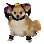 RUBIE'S(ルービーズ) PET(ペット用コスプレ) ペットコスプレ Headpiece & 4 Paw Cuffs Bat(ヘッドピース & 4 パーティー カフス バット) Mサイズ
