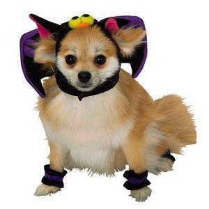 RUBIE'S(ルービーズ) PET(ペット用コスプレ) ペットコスプレ Headpiece & 4 Paw Cuffs Bat(ヘッドピース & 4 パーティー カフス バット) Sサイズ - 拡大画像