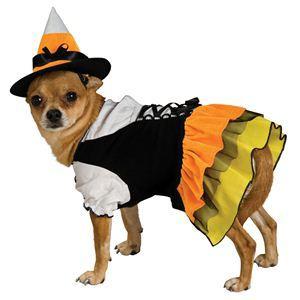 【コスプレ】 RUBIE'S(ルービーズ) PET(ペット用コスプレ) ペットコスプレ Candy Witch Pet Costume(キャンディー ウィッチ ペット コスチューム) XSサイズ - 拡大画像