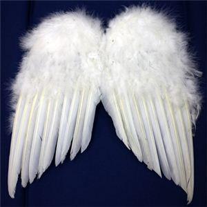 【パーティーグッズ】天使の翼 (L) - 拡大画像