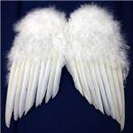 【パーティーグッズ】天使の翼 (L)